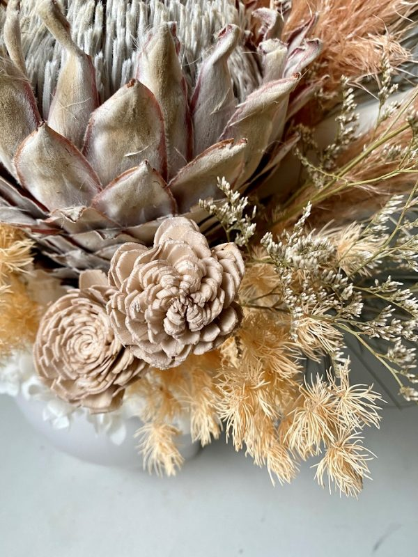 cairns dried flowers